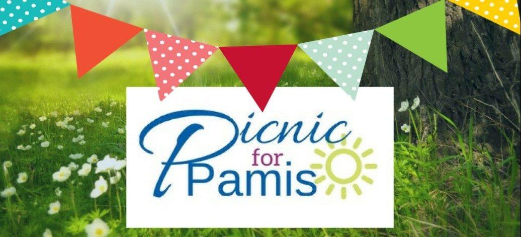 The Big PAMIS Picnic Recipe book